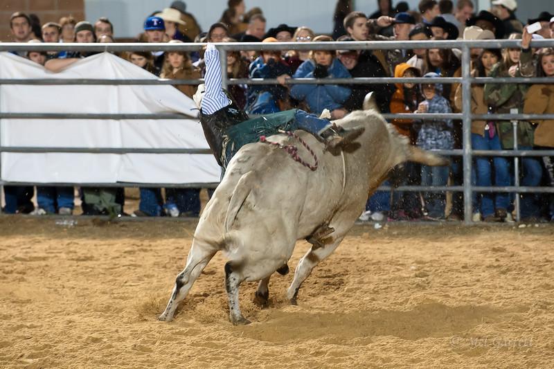 20120225-Katy_Rodeo_2-25-12_Sat-0418