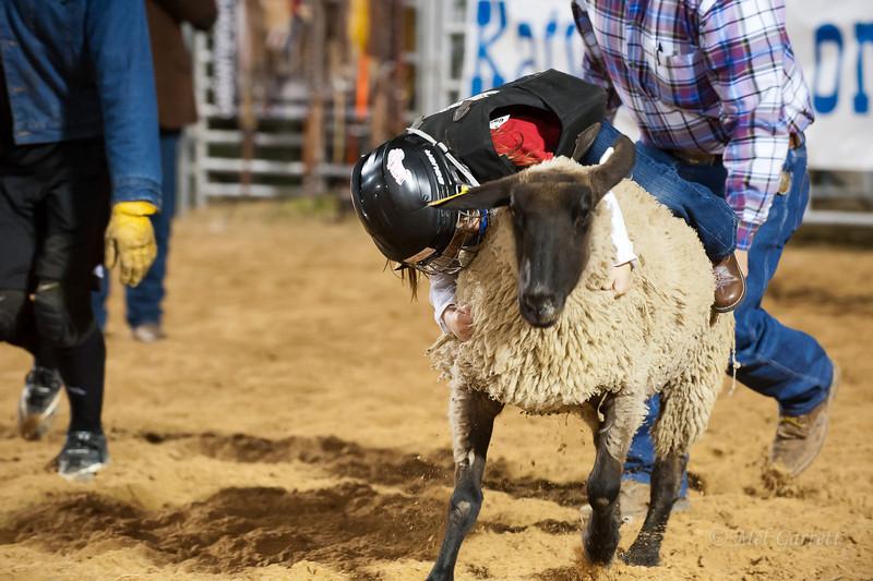 20120225-Katy_Rodeo_2-25-12_Sat-0269