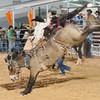 20120225-Katy_Rodeo_2-25-12_Sat-0347