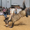 20120225-Katy_Rodeo_2-25-12_Sat-0348