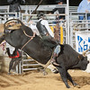 20120225-Katy_Rodeo_2-25-12_Sat-0629