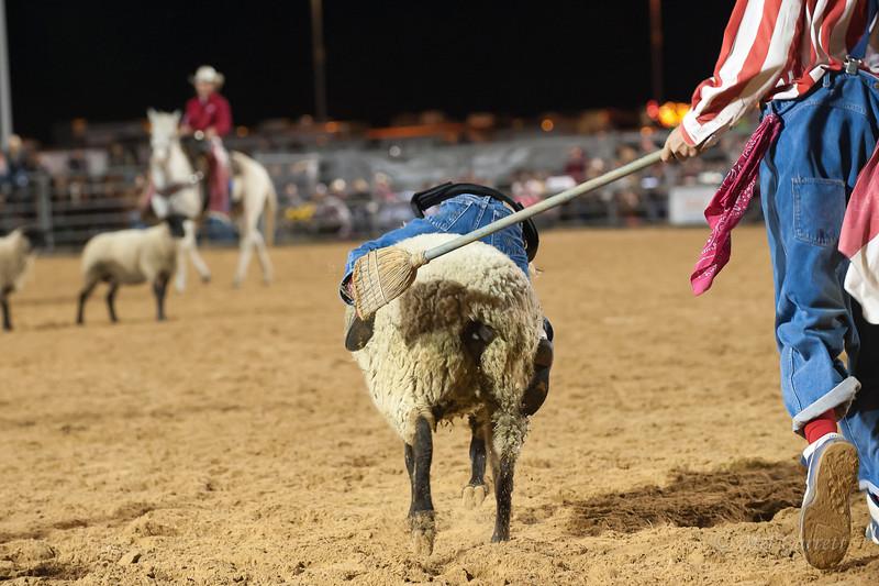 20120225-Katy_Rodeo_2-25-12_Sat-0298