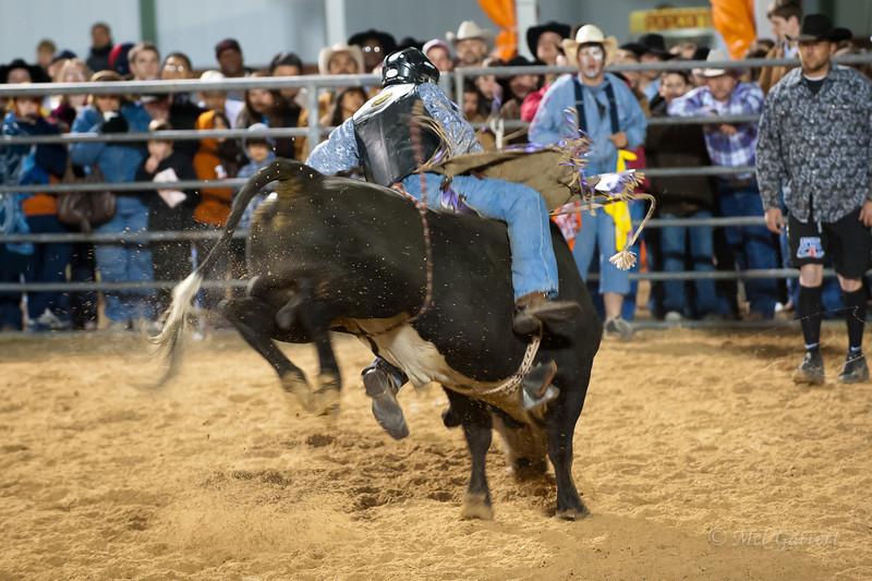 20120225-Katy_Rodeo_2-25-12_Sat-0428