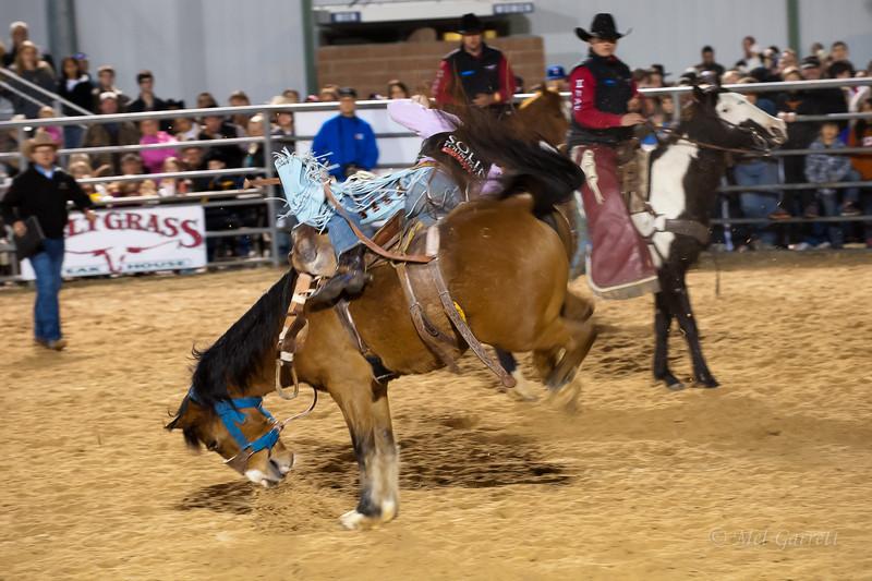 20120225-Katy_Rodeo_2-25-12_Sat-0362