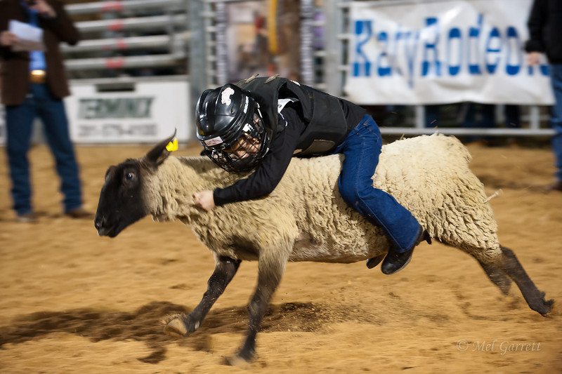 20120225-Katy_Rodeo_2-25-12_Sat-0396