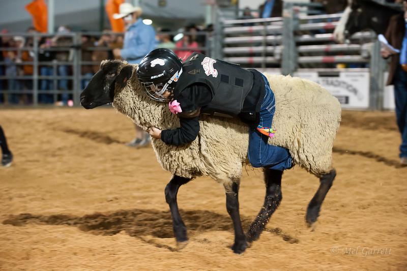 20120225-Katy_Rodeo_2-25-12_Sat-0246