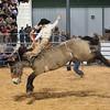 20120225-Katy_Rodeo_2-25-12_Sat-0349