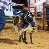 20120225-Katy_Rodeo_2-25-12_Sat-0264