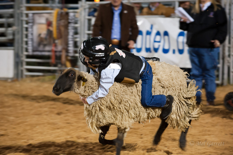 20120225-Katy_Rodeo_2-25-12_Sat-0376