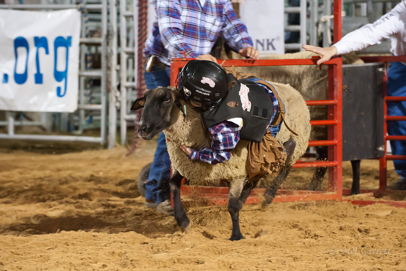 20120225-Katy_Rodeo_2-25-12_Sat-0240