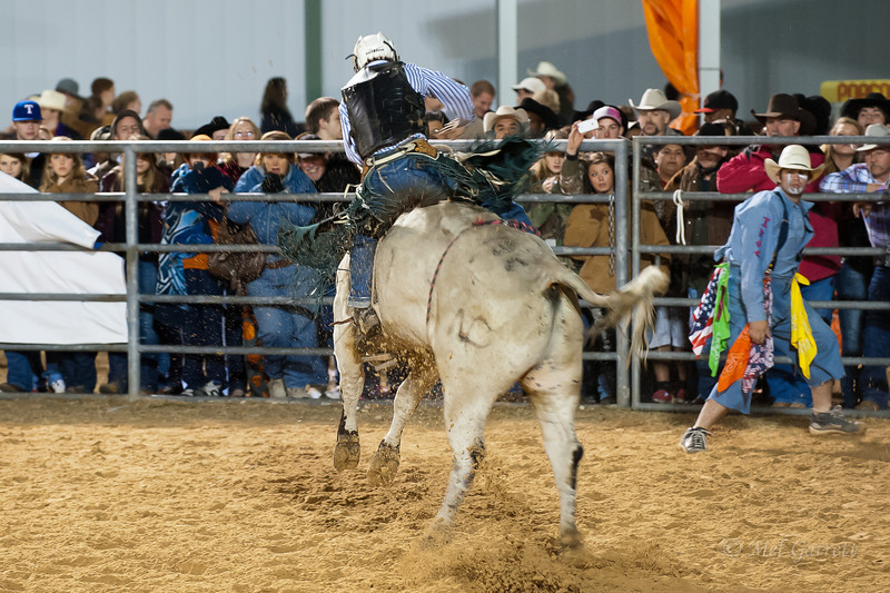 20120225-Katy_Rodeo_2-25-12_Sat-0417
