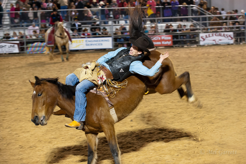 20120225-Katy_Rodeo_2-25-12_Sat-0051