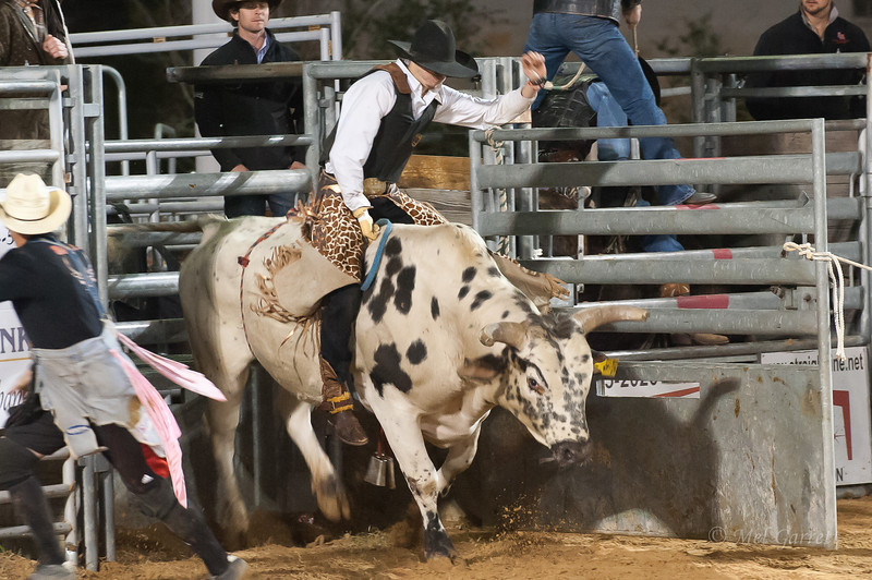 20120225-Katy_Rodeo_2-25-12_Sat-0620