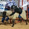 20120225-Katy_Rodeo_2-25-12_Sat-0244