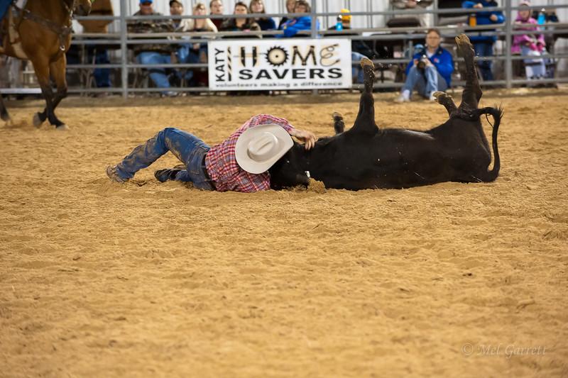 20120225-Katy_Rodeo_2-25-12_Sat-0125