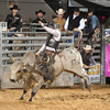 20120225-Katy_Rodeo_2-25-12_Sat-0627