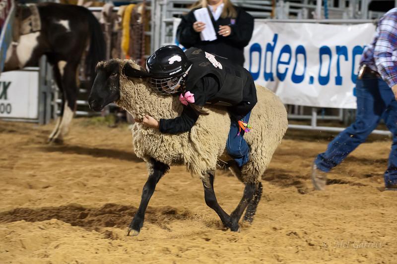 20120225-Katy_Rodeo_2-25-12_Sat-0245