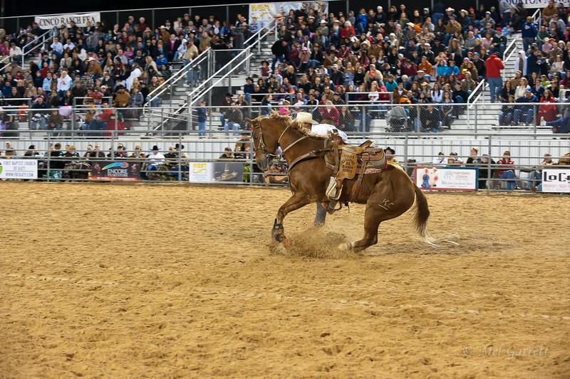 20120225-Katy_Rodeo_2-25-12_Sat-0328