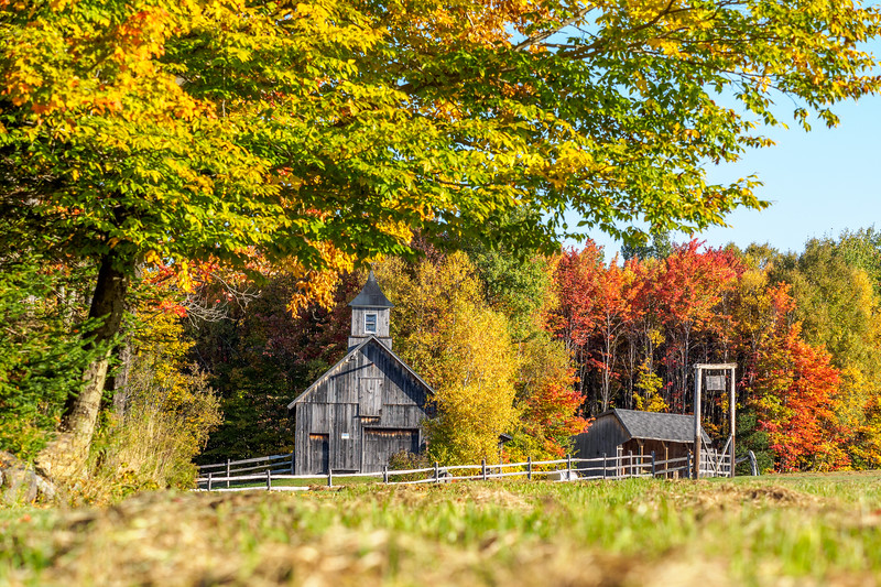 Sonnys Barn