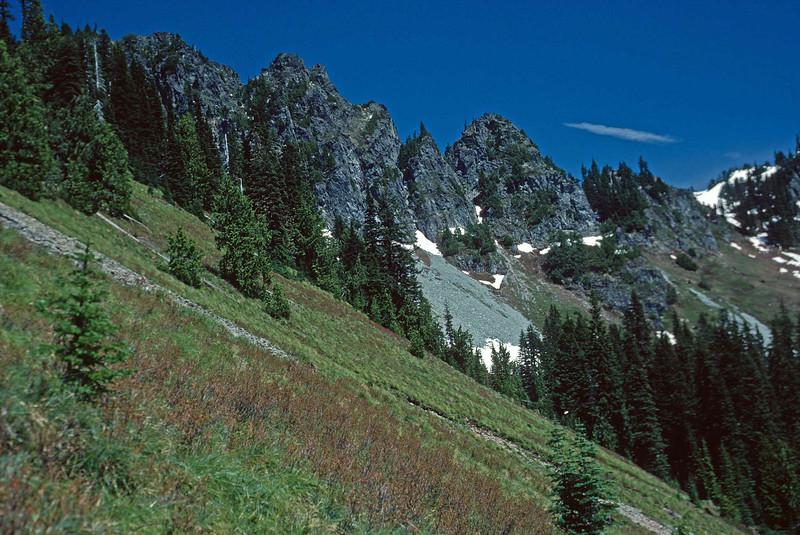 Somewhere in Mount Rainier National Park (4)