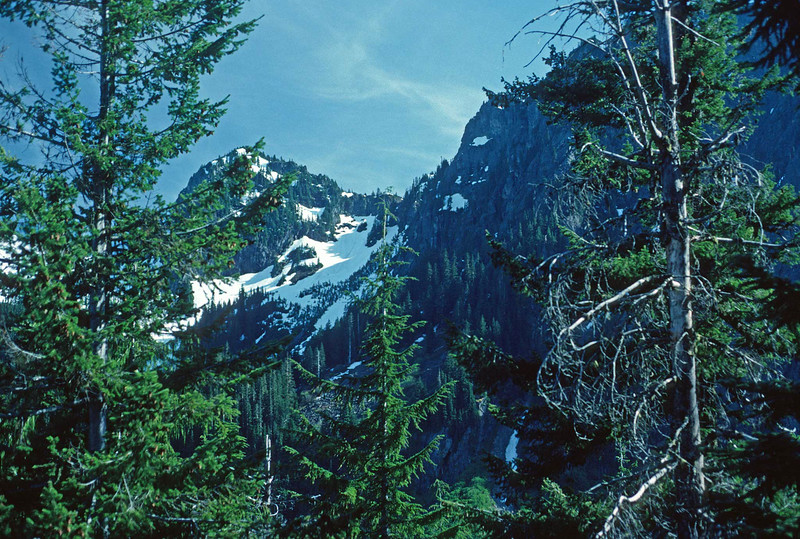 Snow in Mount Rainier National Park