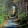 Fellowship Road