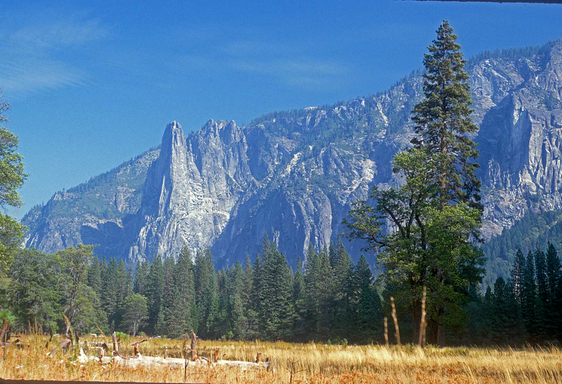 Yosemite (5)