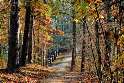 The Path Natural Bridge State Park Kentucky