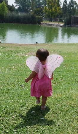 yzana with wings