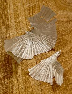 Garlic Skins on Cutting Board, Portland, 2021