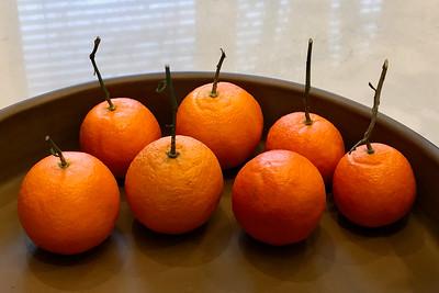 Tangerines, Portland, 2019