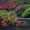 The Bridges of Kubota Garden