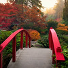 Bridge to an Autumnal Paradise