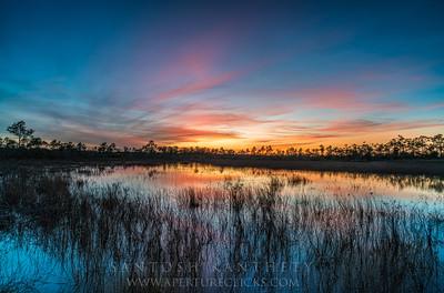 Jetstream Sunset