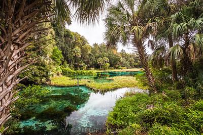 Rainbow River Headsprings, FL