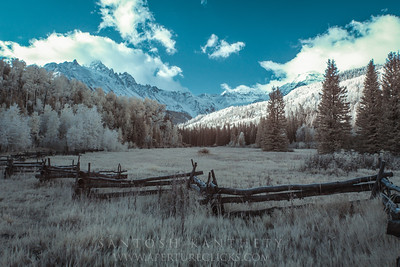 Infrared fall colors