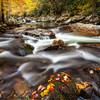 Little River- Elkmont