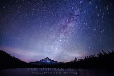 Trillium Stars