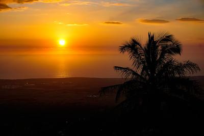Kona Paradise