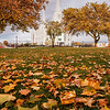 Brigham City Temple - Autumn
