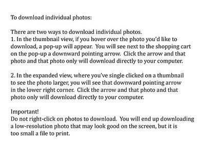 Download individual photo