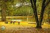 OYTL_Camp Feliciana-4534
