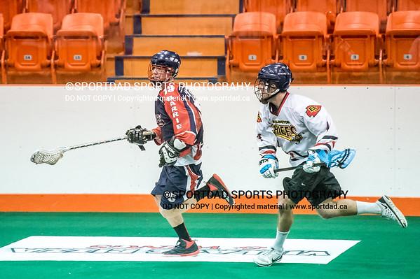 SPORTDAD_lacrosse_642
