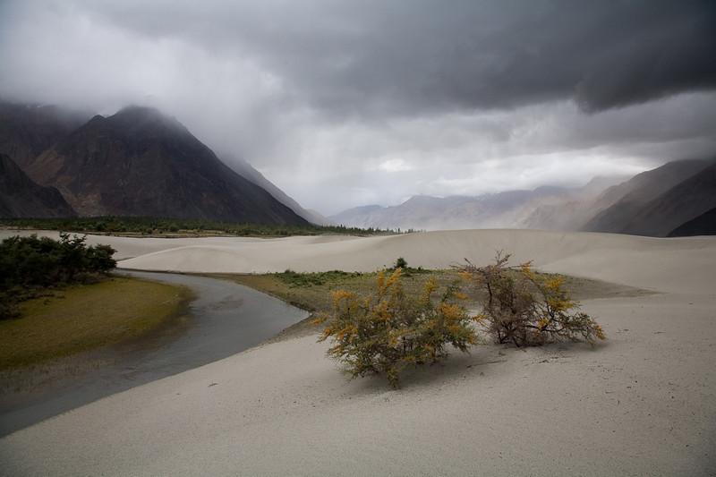 Nubra Valley, Hundar, Ladakh