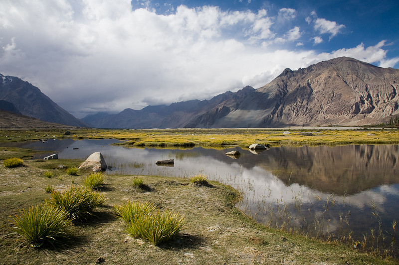 Nubra Valley near Diskit, Ladakh