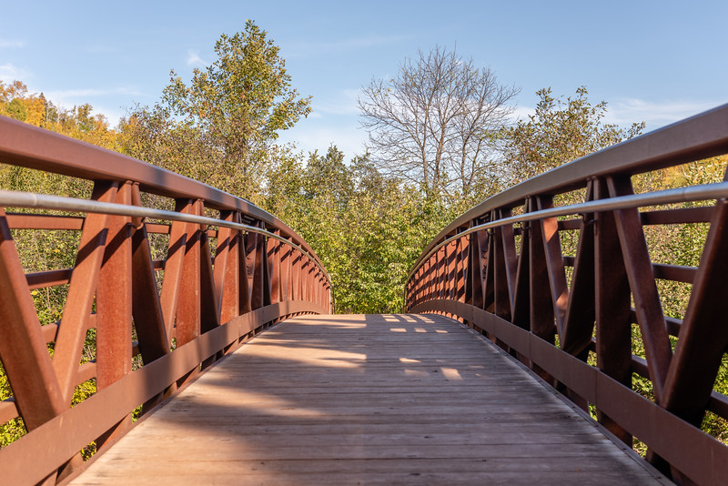 Bridge Shadows
