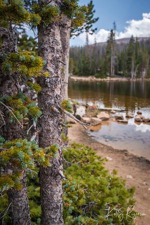 Mirror Lake, Utah. A walk around the lake gives way to all sorts of beautiful scenery.