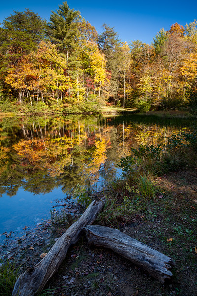 Dockery Lake Reflections