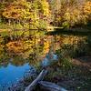 Dockery Lake Reflections