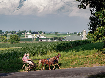 ©2020 Dennis A  Mook; All Rights Reserved; Lancaster County; Boy & Women Uphill In Buggy-2
